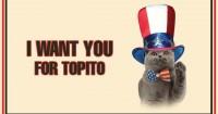 i-want-you-cat-slider