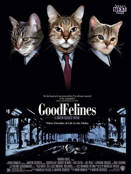Les plus belles affiches de cinéma - Page 6 Affiche_film_chat001