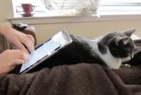 iPad015