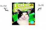 lol-cat-calendar