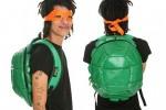 turtles-510x403