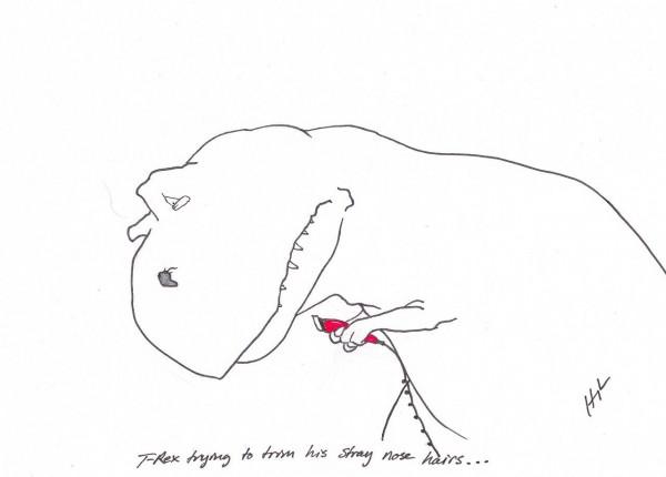 se raser les poils du nez