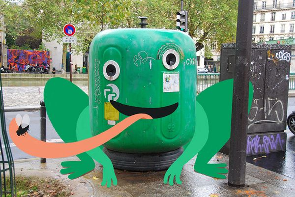 grenouille-poubelle-tineke-meirink-safari-imaginaire-samsung-salaxynote_resultat