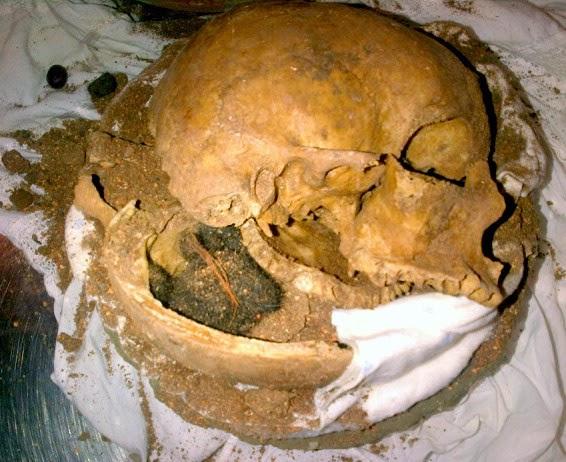 TSA-Skull