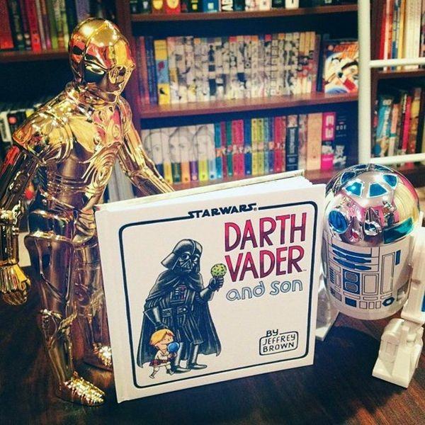 le livre Dark Vador and son_resultat