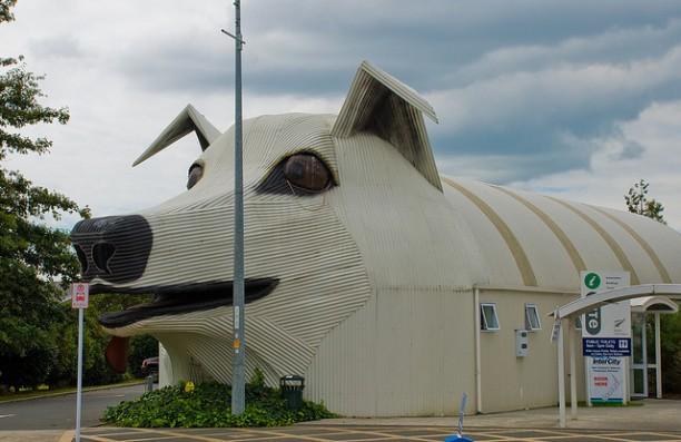dog-bldg-612x397
