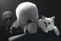 une_chatstar