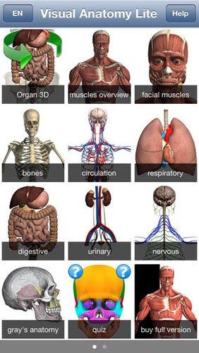 anatomylite