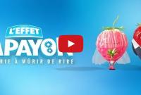 effet-papayon