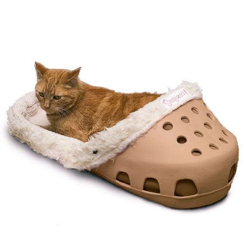 crocs-chat