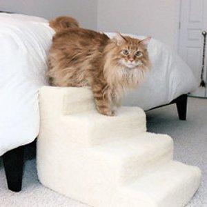 des escaliers pour chats topito. Black Bedroom Furniture Sets. Home Design Ideas
