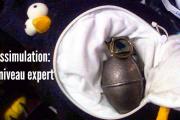 grenade dans pingouin