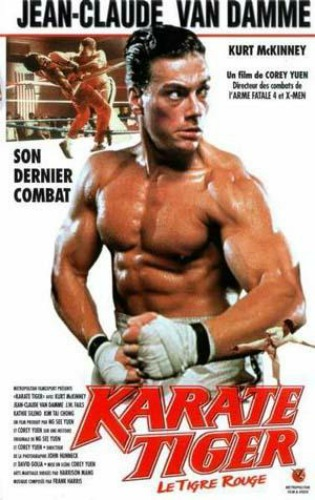 karatetiger01