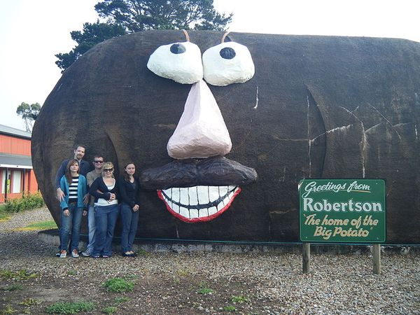 Potatoface, Robertson USA_resultat
