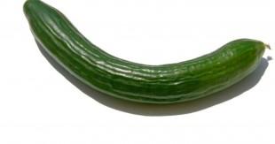 concombre-une