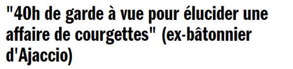 courgettes - Copie