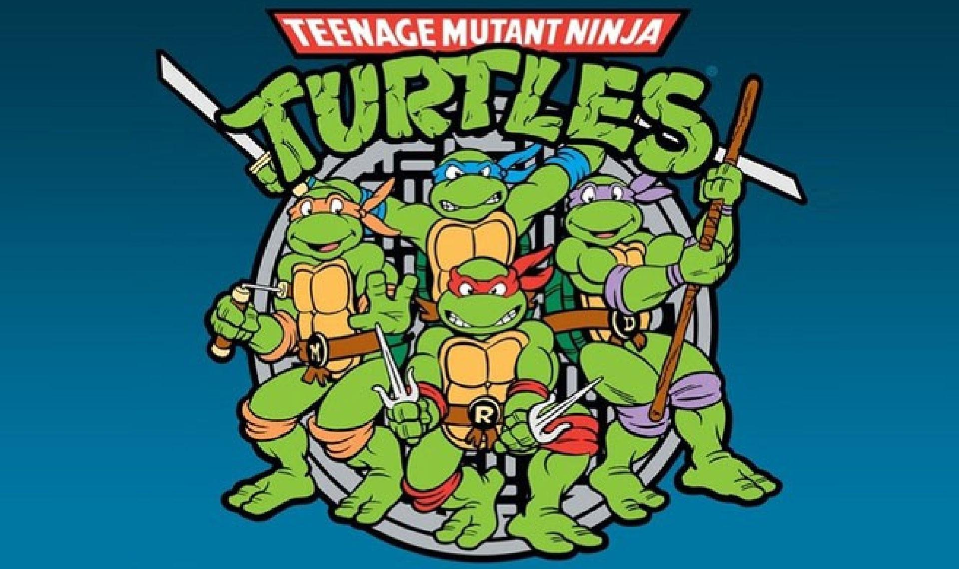 Top 10 des signes que tu as t marqu par les tortues - Image tortue ninja ...