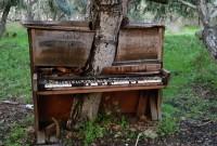 une-nature-piano