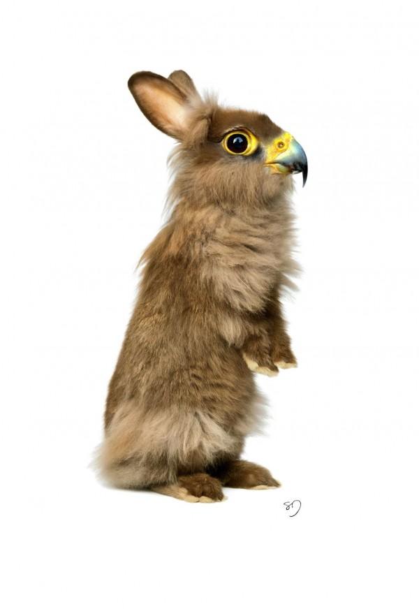 HawkRabbit