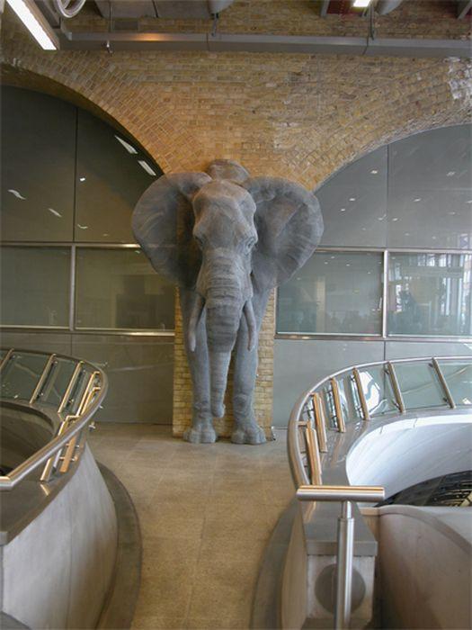 Animalelephant