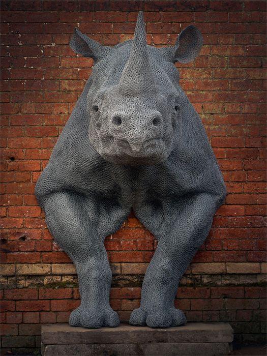 Animalrhino