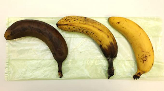 comment-conserver-bananes-fraiches-569