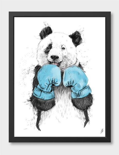 panda-boxer
