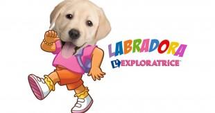 une_dog-tv