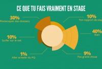 Infographie_stage_Plan de travail 12