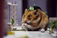 Hamster-Godzilla-6