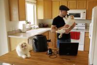 Catzooka   Cat Launcher    YouTube