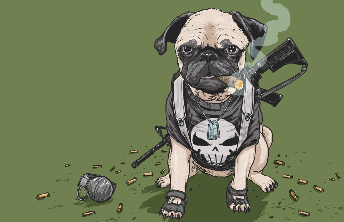 chien-super-heros-4