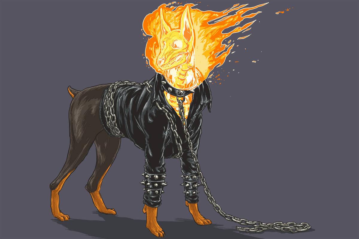 chien-super-heros-6