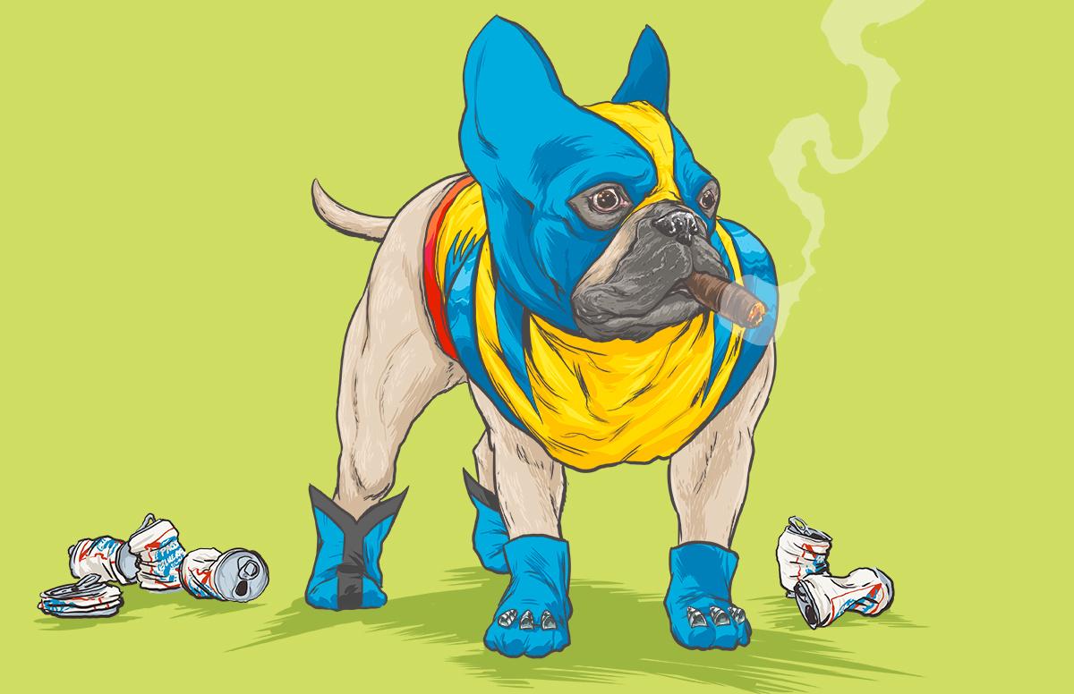 chien-super-heros-7