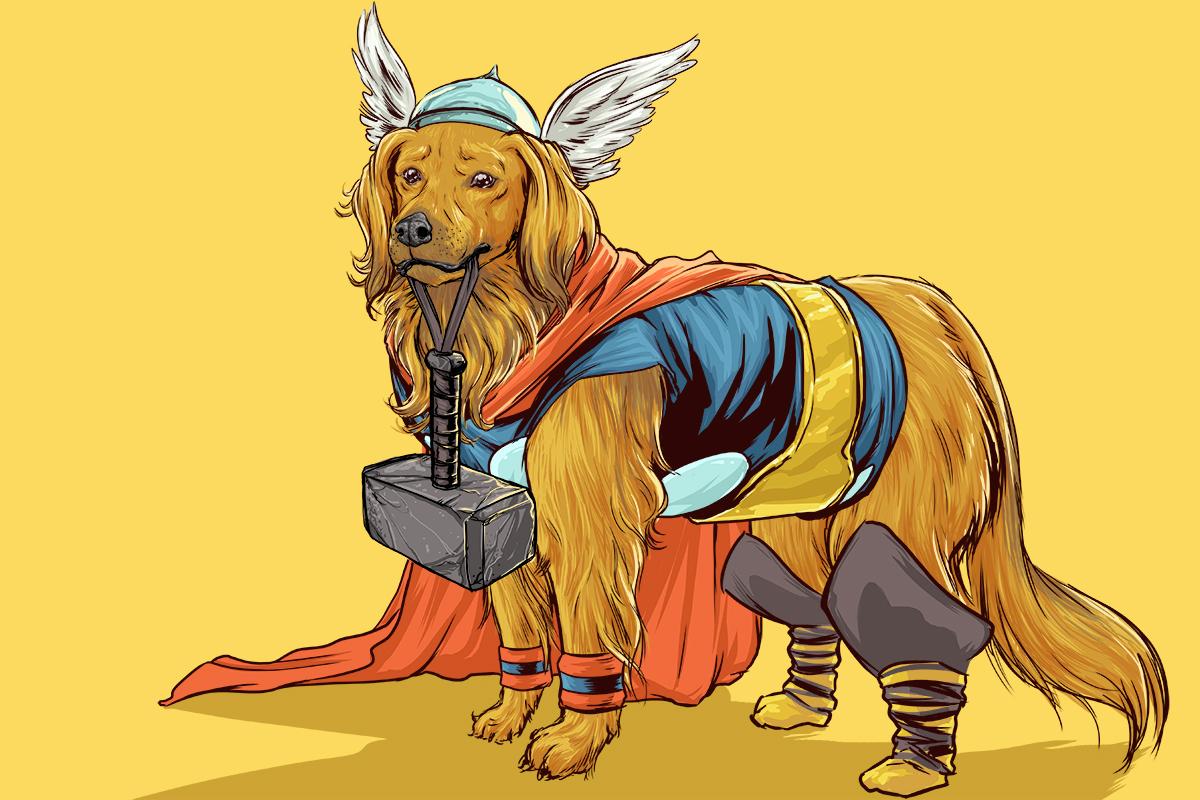 chien-super-heros-9