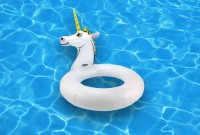 une-licorne-piscine