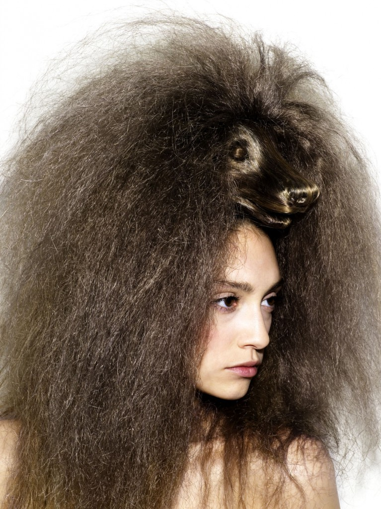 coiffure-chien