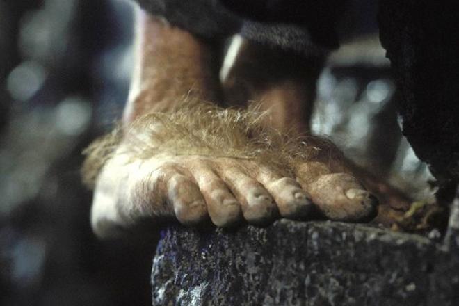 hobbit_feet_rect