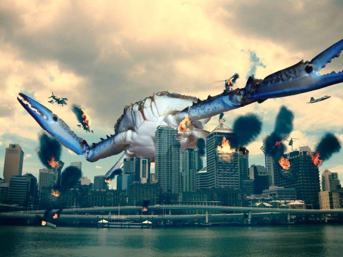 photoshop-battle-crabe-9