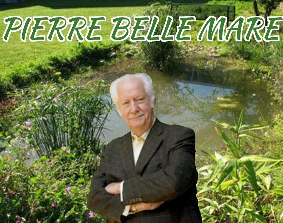 pierrebellemare_guillaume