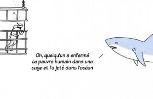 une_animaux_parlent