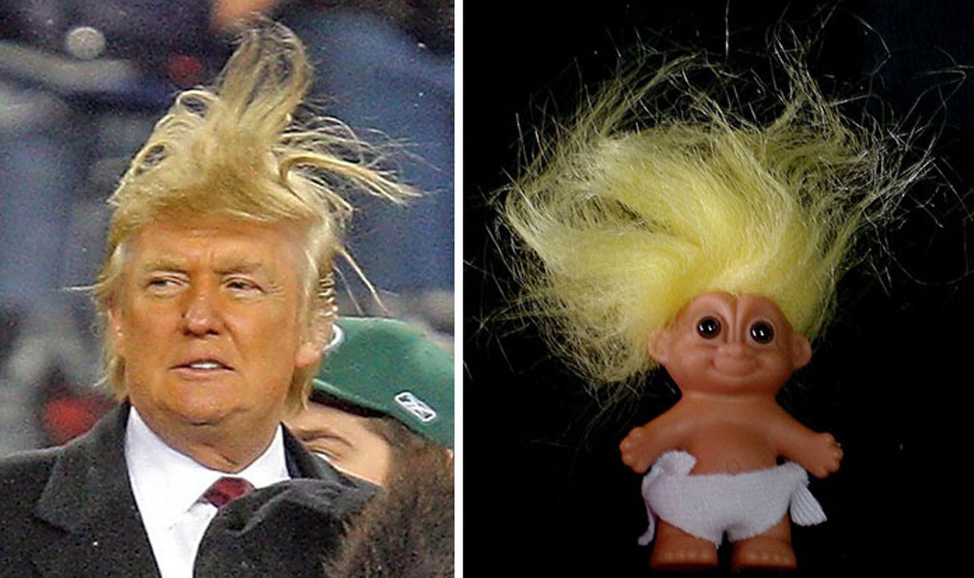... ressemblent à Donald Trump, belle moumoute monsieur Trump ! | Topito