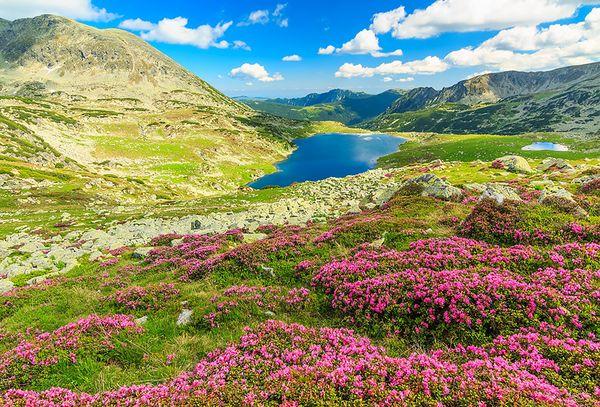 Le Parc National de Retezat_resultat