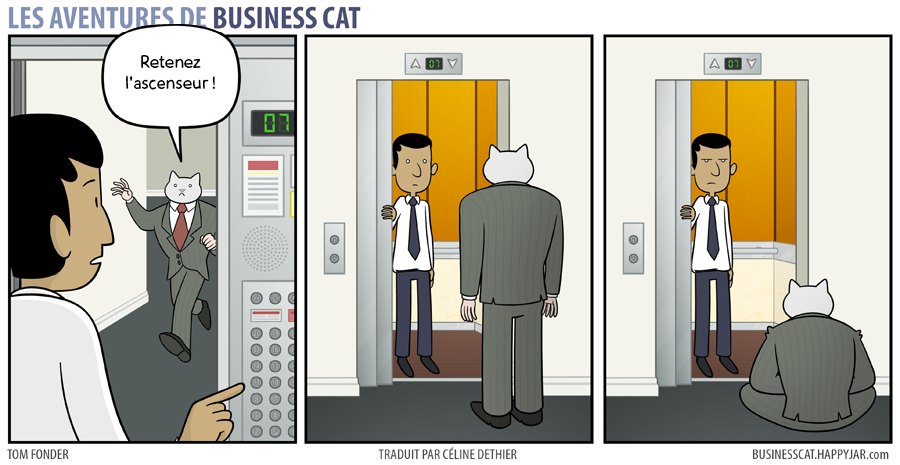 business-cat-1