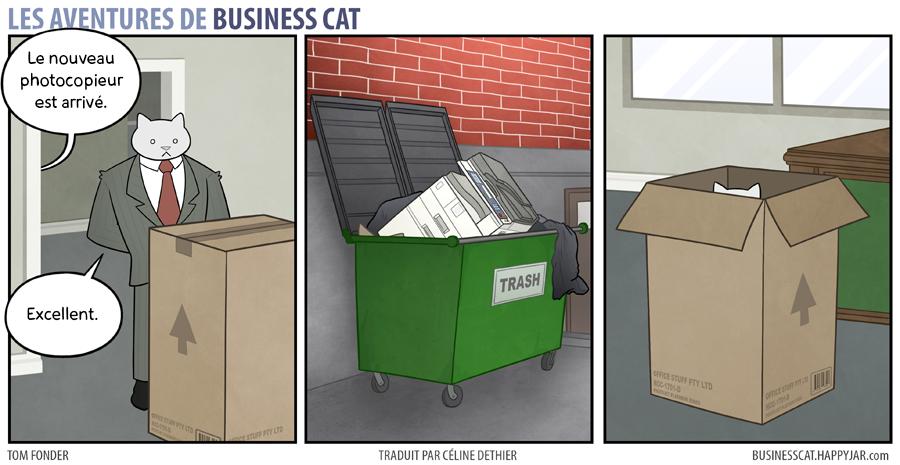 business-cat-12