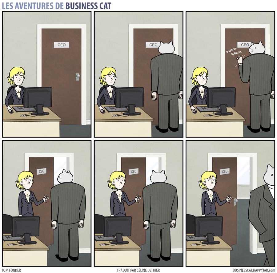 business-cat-15