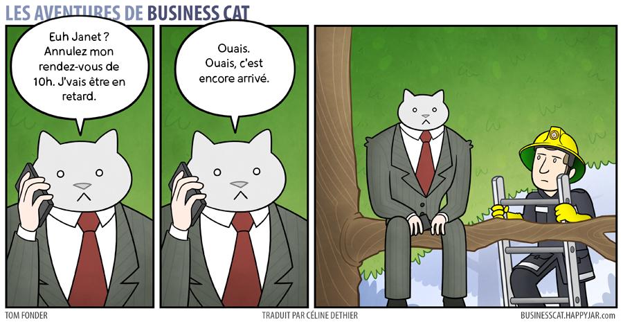 business-cat-17