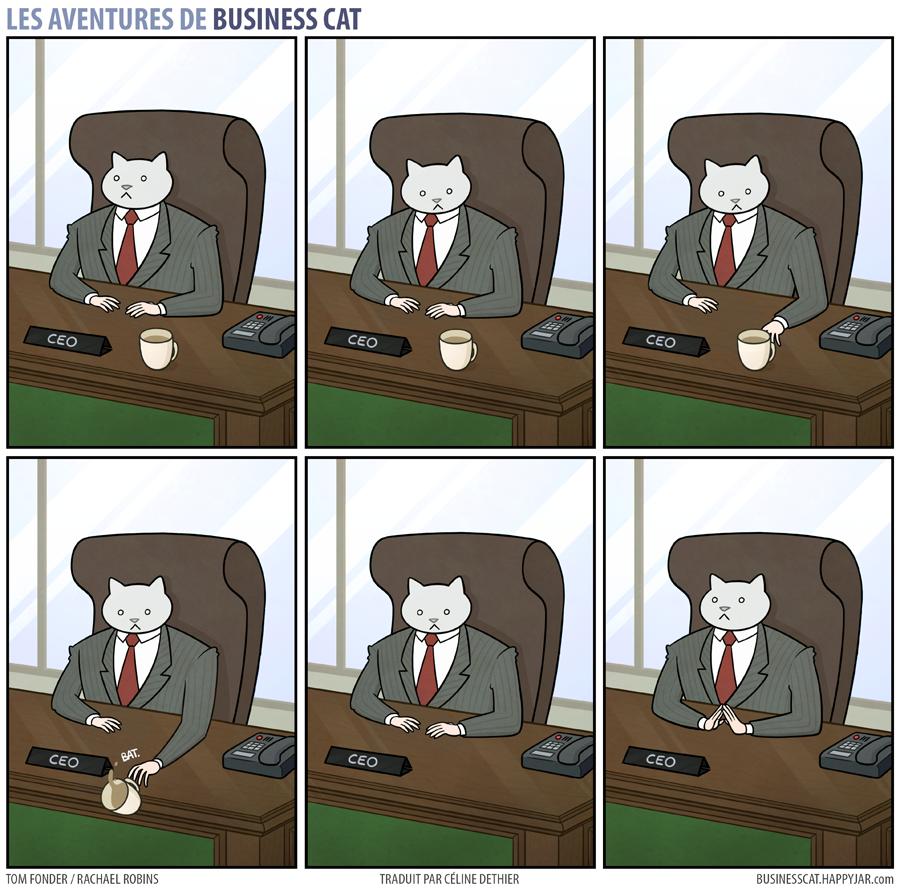 business-cat-2