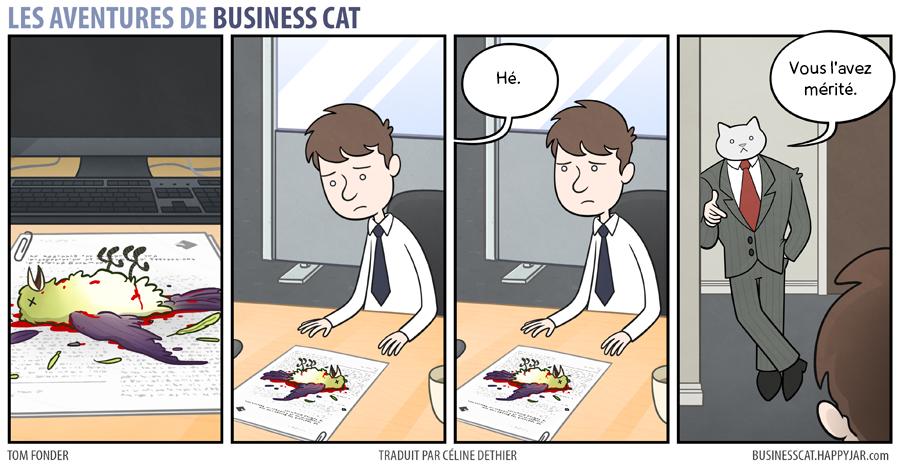 business-cat-4