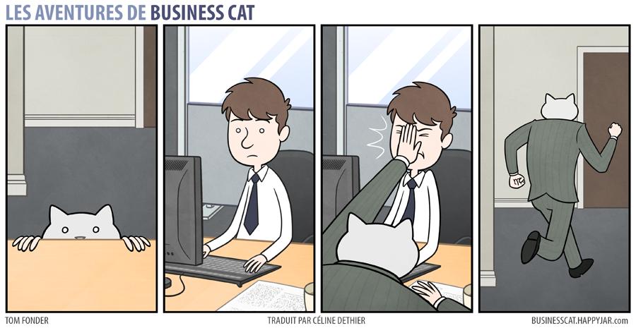 business-cat-5